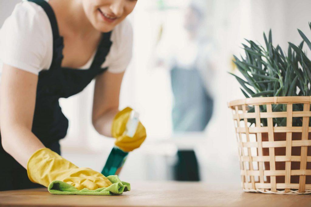 Nettoyage écologique dans la maison - Multis 36