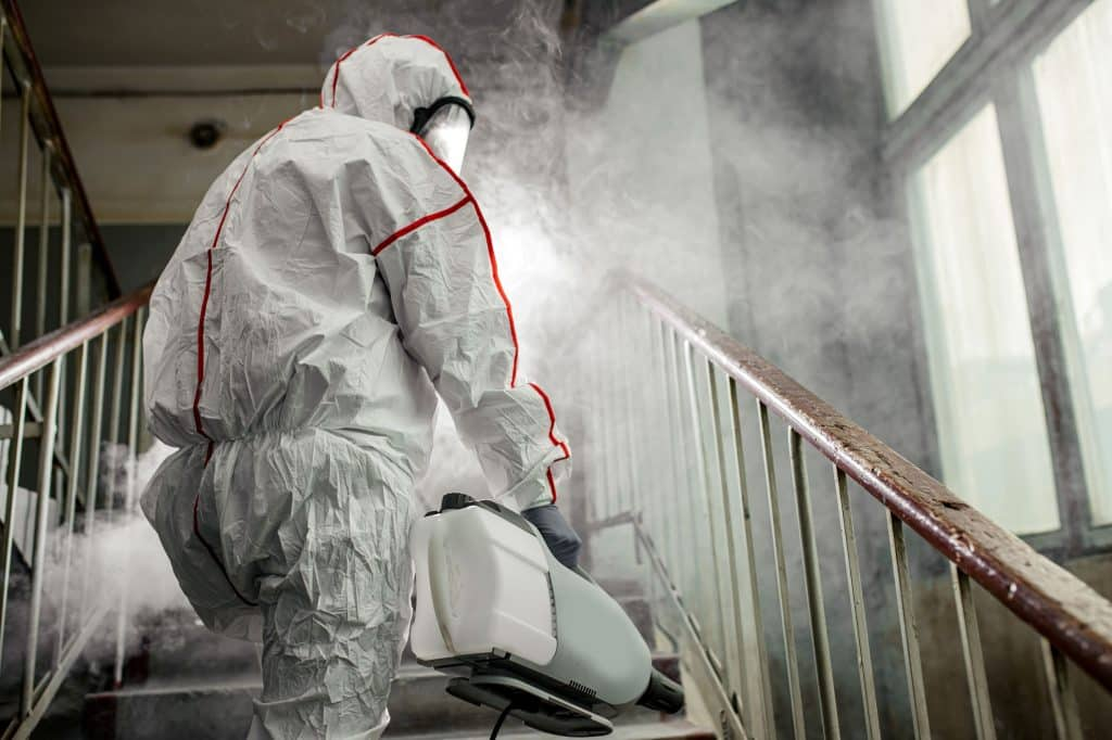 Nettoyage Diogène, désinfection par Multis 36